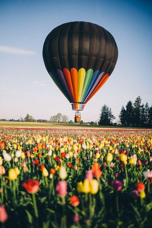 Hot air ballooning experience gift voucher card
