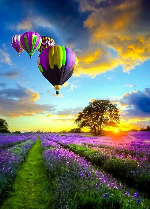 hot air balloon gift voucher experience