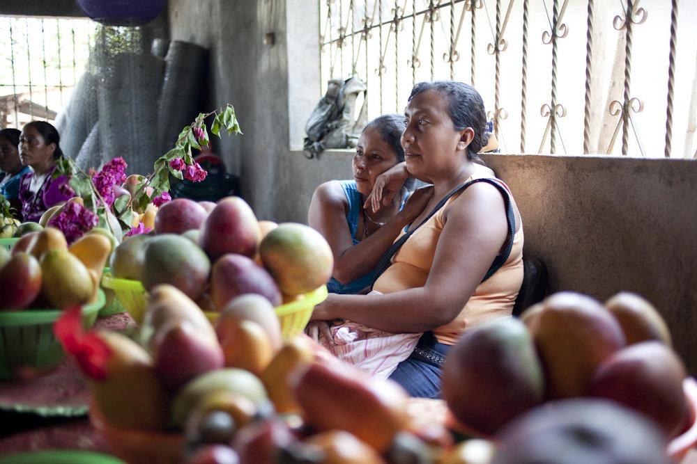 Hacia una red con Justicia de Género: La Auditoría de Género de la ILC - La Auditoría de género de la ILC se llevó a cabo en 2017. Durante la Auditoría se evaluó el trabajo de la Coalición en cuanto a la justicia de género y los derechos a la tierra de las mujeres.