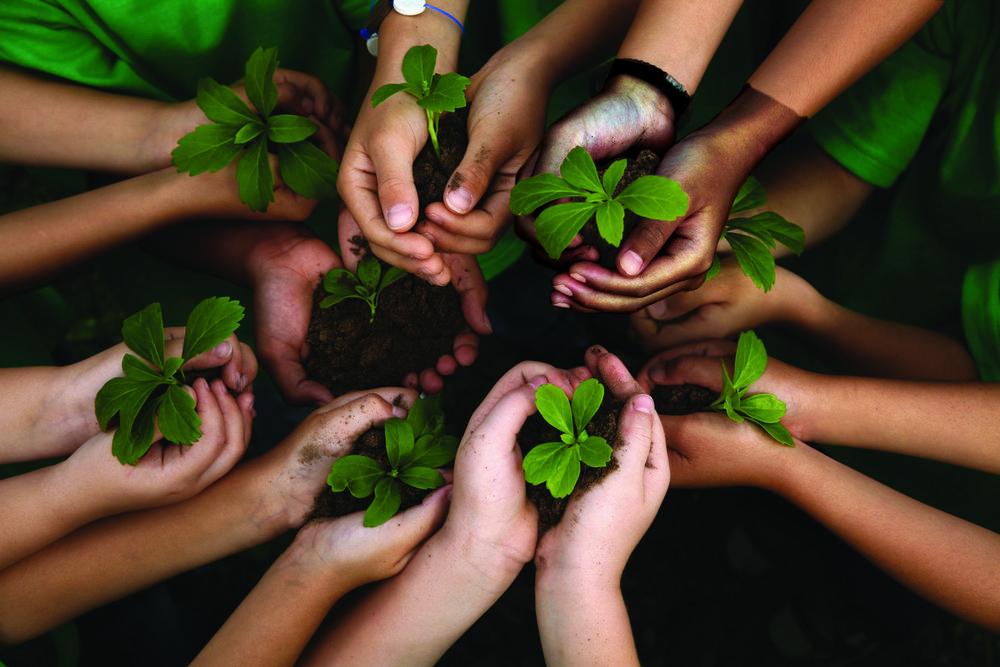 """Creación mediante Alianzas de una Red mejorada: Irish Aid y la ILC - La creación de alianzas efectivas que vayan más allá del conjunto de miembros de la ILC es un importante aspecto del primer objetivo estratégico de la coalición: """"Conecta""""."""