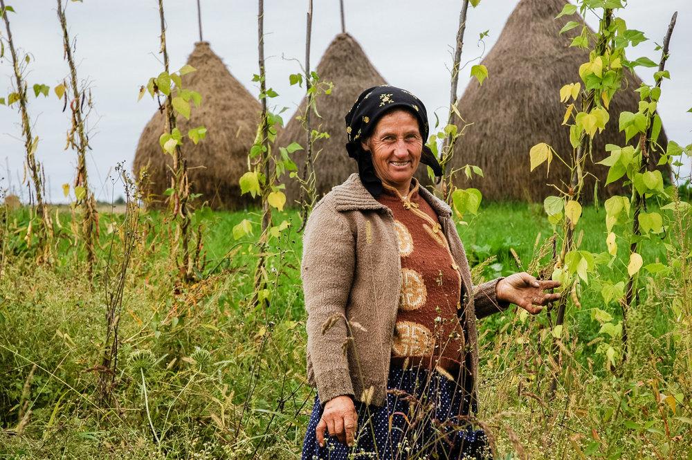 Una creciente red de líderes que luchan por los derechos a la tierra - En 2018 la red de la ILC ha crecido hasta alcanzar 255 miembros repartidos en 77 países, ha incrementado la diversidad de la red de la ILC, y lo que es más importante, la de los miembros que representan directamente a los usuarios de la tierra, como los agricultores familiares, los Pueblos Indígenas, y las mujeres.