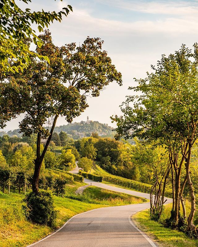 All roads lead to...Collalbrigo! Photo by @corradopiccoli_photographer . . . #wine #prosecco #proseccolife #proseccolove #proseccotime #streetphotography #winery #veneto #italy #landscape #hill #proseccodocg