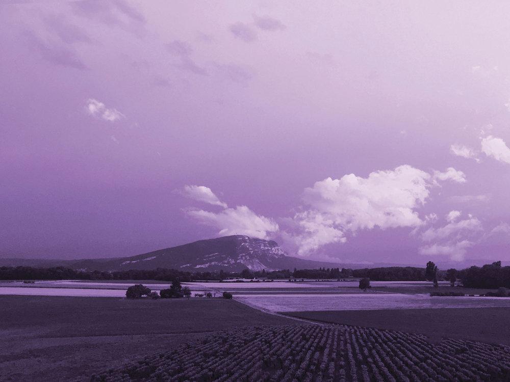 Fond-image-violet-2.jpg