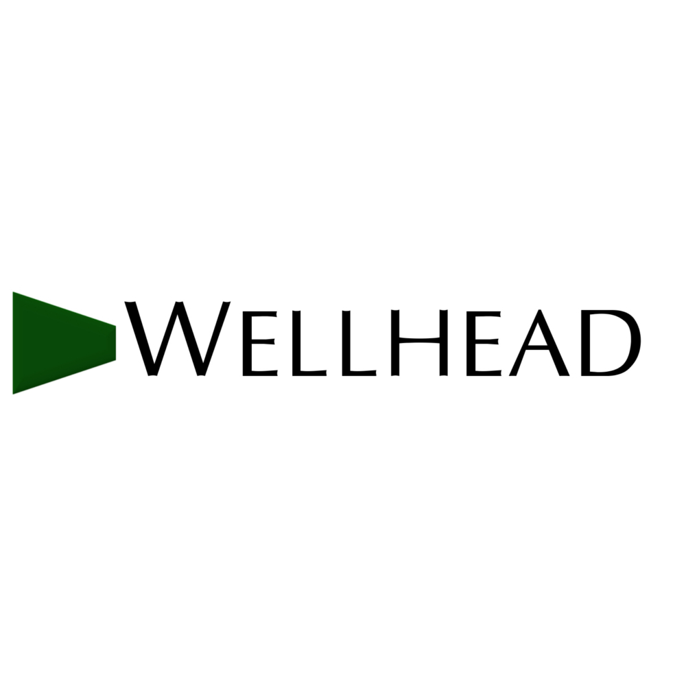 Wellhead Electric