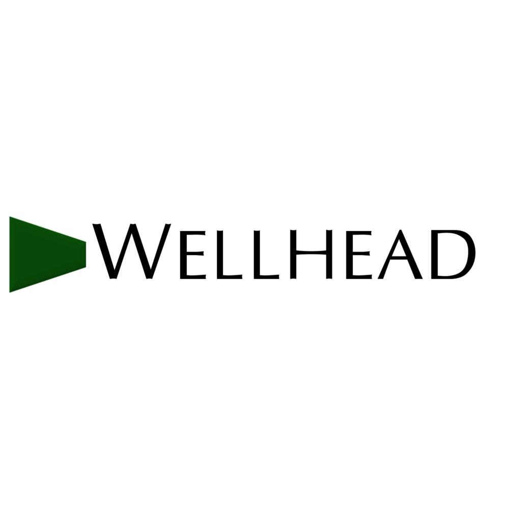 Wellhead Electric