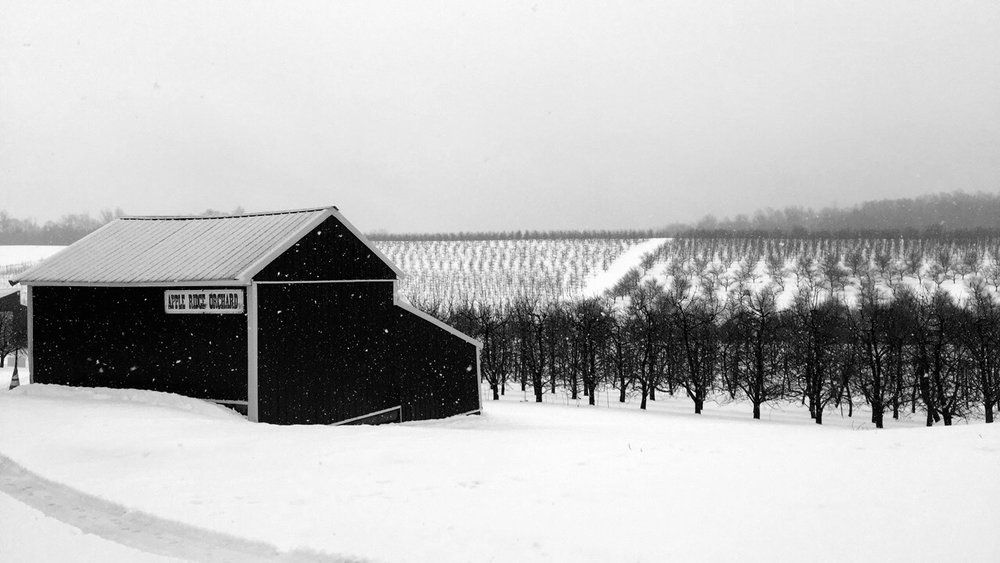 Winter here at Abendroth's Apple Ridge Orchard