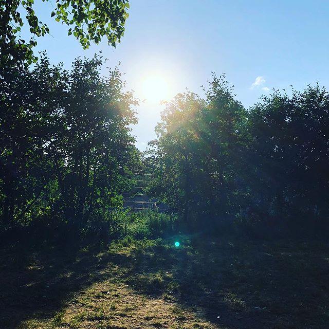 #andrelax #berlin #summerishere #sunisshining #sun #feelinghappy