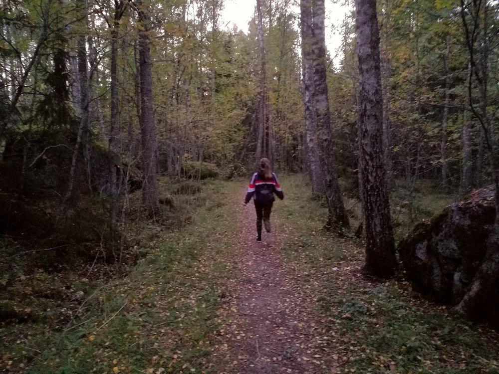 Lokakuu: Hääkuvien miljöön testaus metsässä.