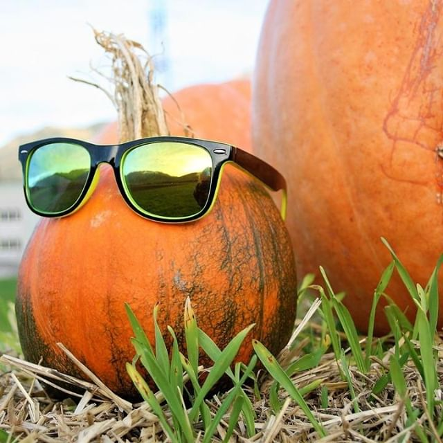 Happy Halloween  #Specs #Spectacles #Frames #Glasses #Eyeware #Fashion #Instafashion #Hastings #Bexhill #Rye  #Battle #tunbridgewells