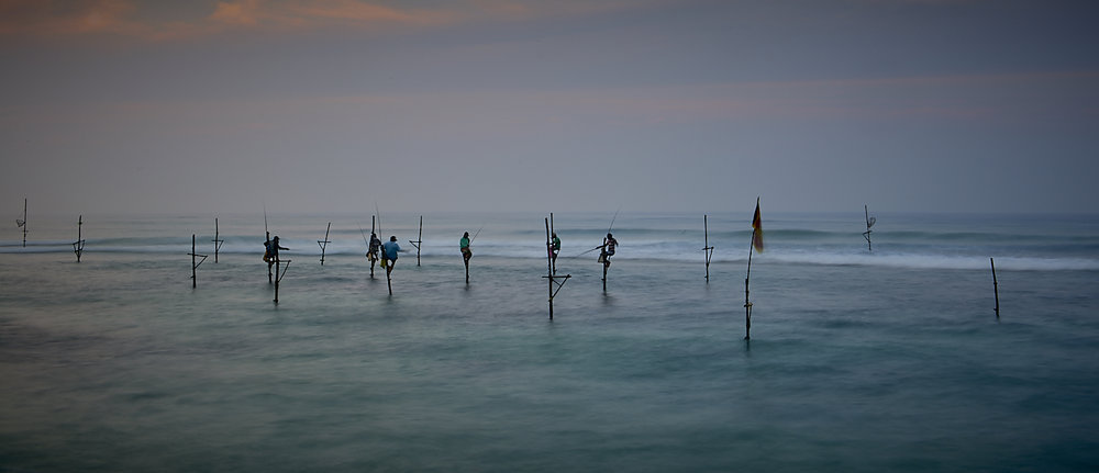 sri lanka stilt fishermen