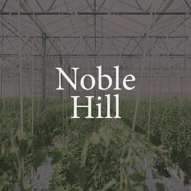 Noble Hill box.jpg