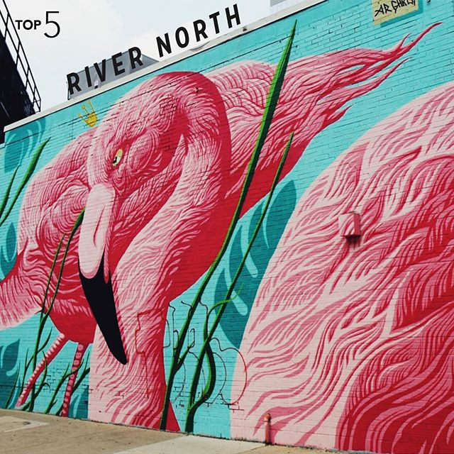 The art in River North is on the rise and with more murals coming over the next year, we're excited to see what's in store. #InternTop5