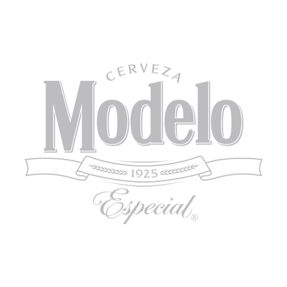 modeloespecial-logo-Grey.png