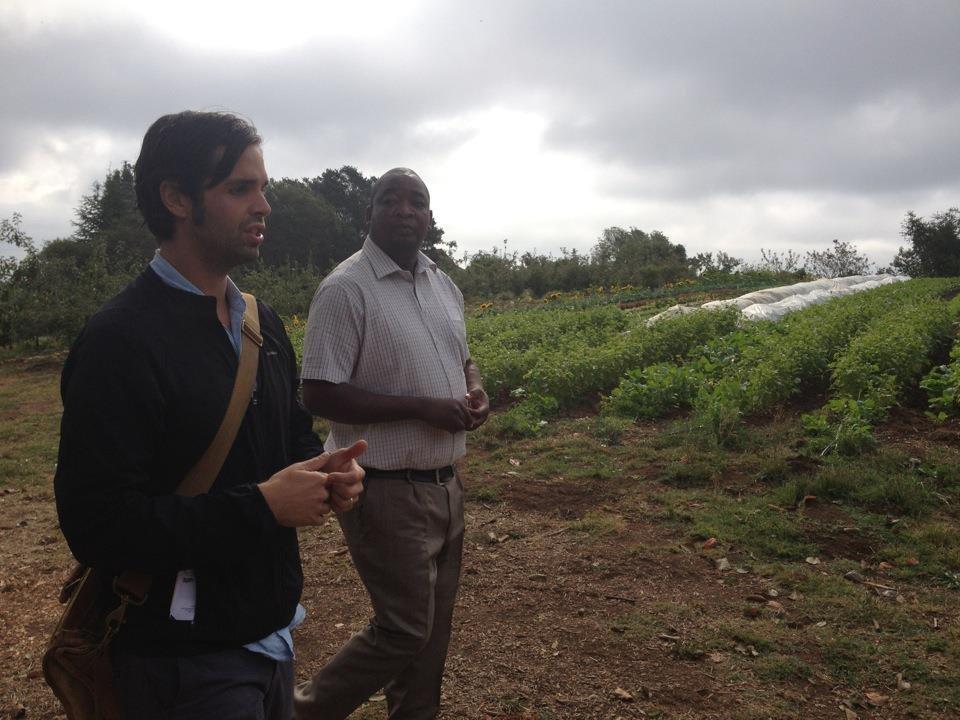 Two men walking along a farm field