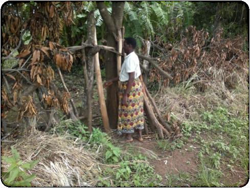 A woman  standing at her garden