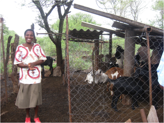 An African woman stands smiling beside a chain link fence surrounding goats