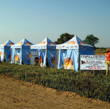 Setting up tents for real-time testing allows Luapula to reach people who would otherwise not be reached.