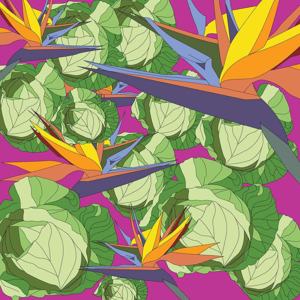 cabbage_paradise-03.jpg
