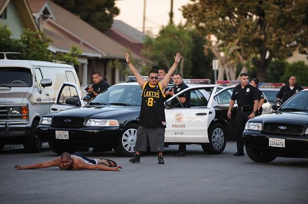 Gang arrest