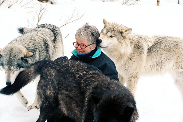 Sandy kissed by wolves