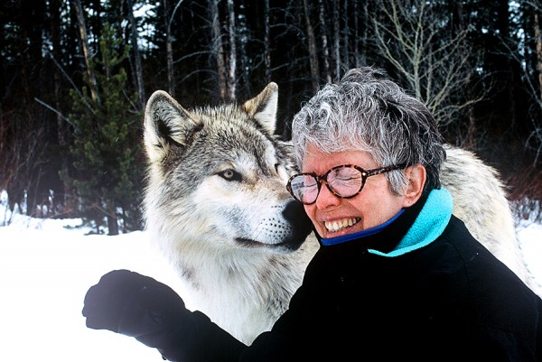Sandy and a Sawtooth wolf
