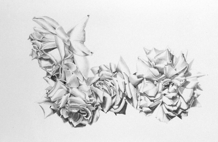 Five Roses drawing by Sandra Sallin