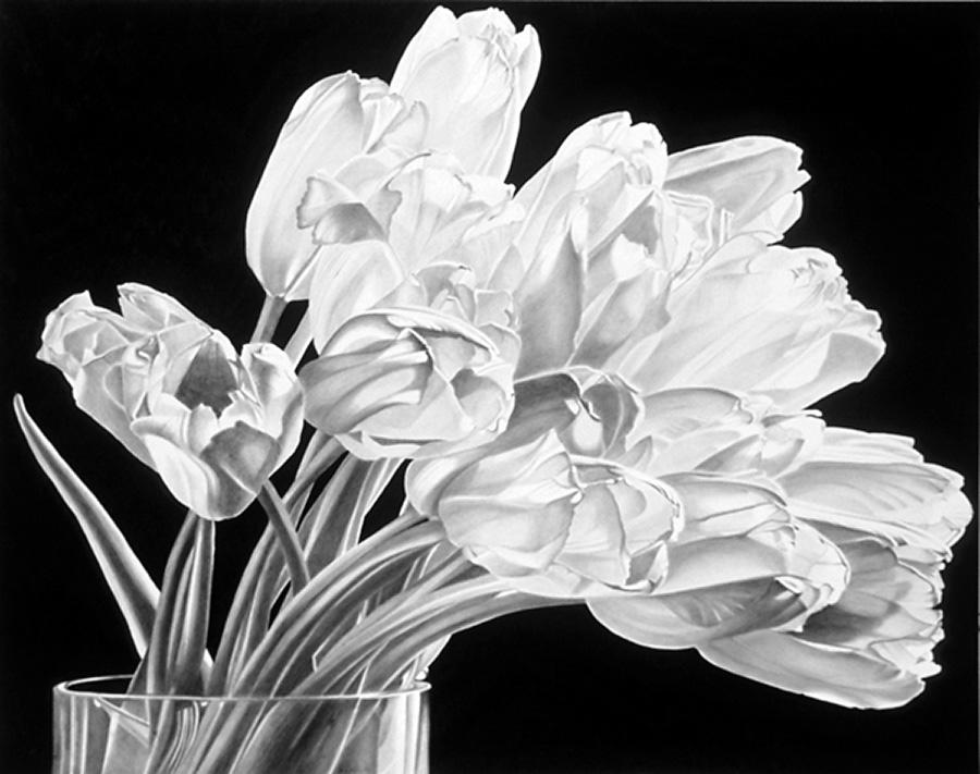 Drawing by Sandra Sallin, Prelude II