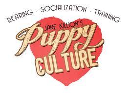 Puppy Culture.jpeg