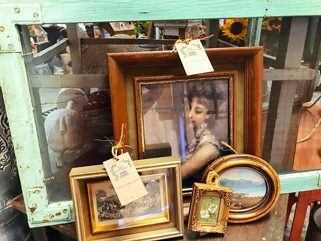We are loving these vintage frames