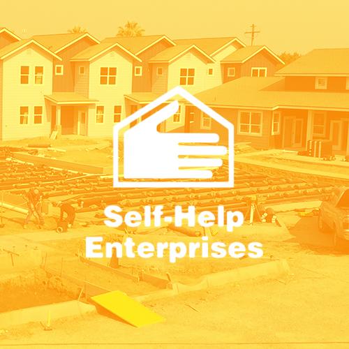 self-help-enterprises-report-qubo-creative