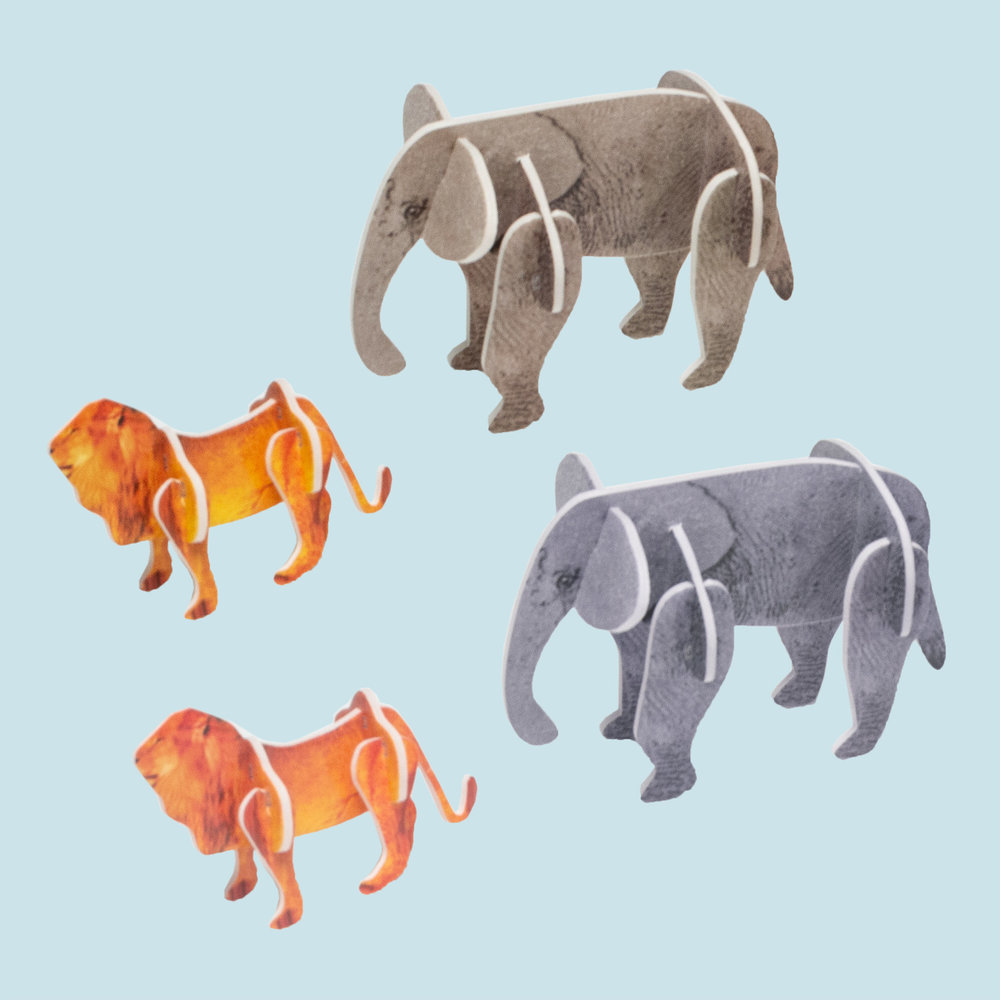 Animals from the circus