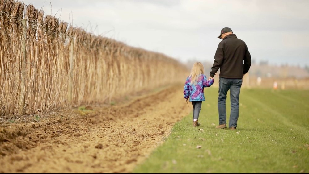father and daughter walking by hay field holding hands