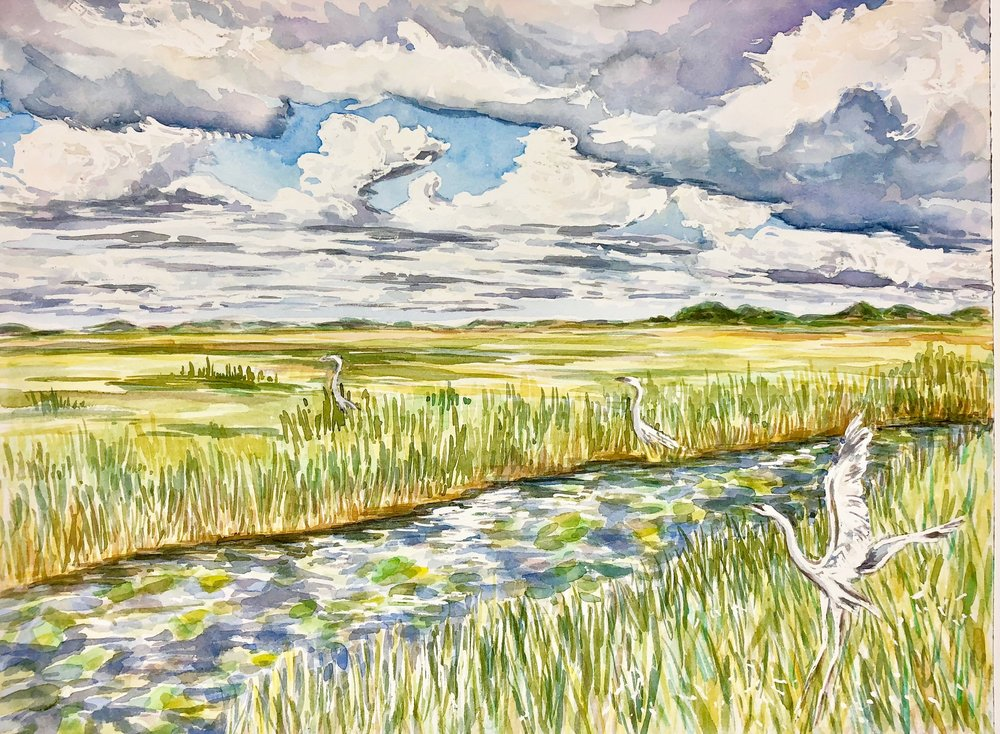 Trip of Cranes, Everglades National Park - watercolor