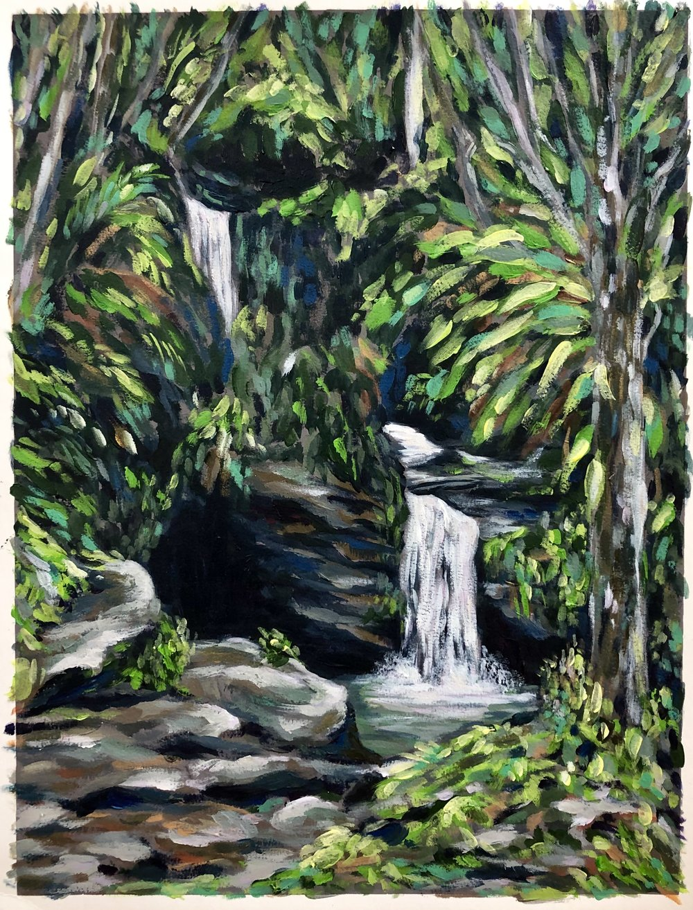 Diego Falls, El Yunque National Rain Forest, Puerto Rico
