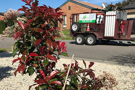 GARDEN CLEAN UP - Request a quote   Learn more
