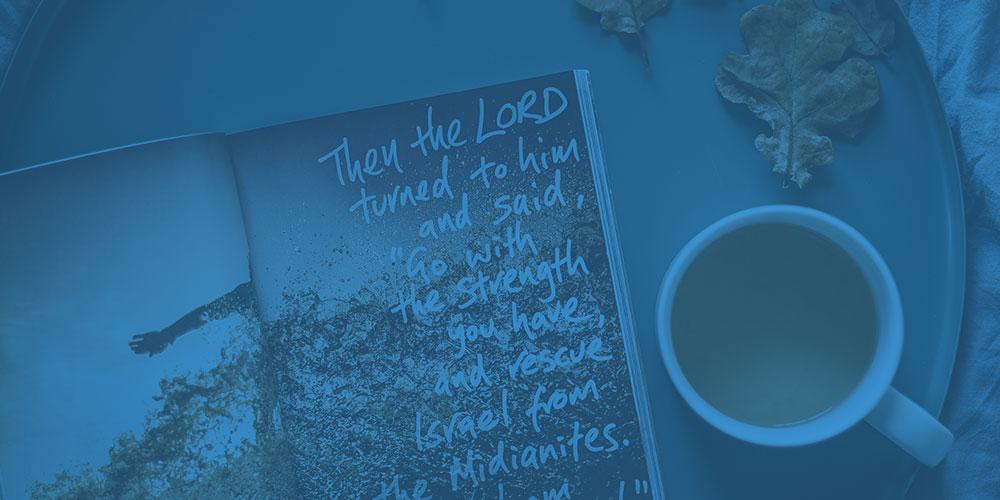 The Witness Newsletter -
