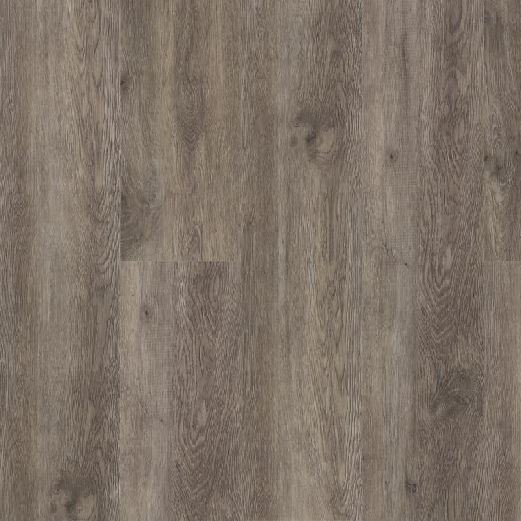 Gray Birch