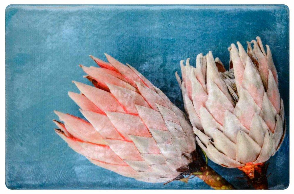 Pastel Pink Proteas