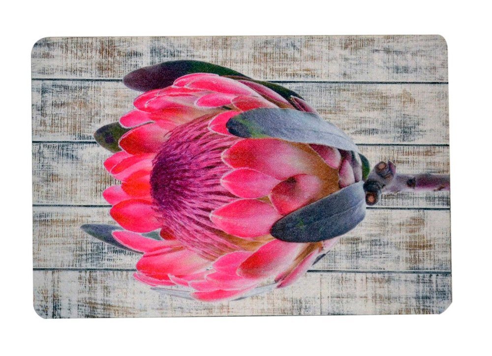 Pink Protea on White Wood