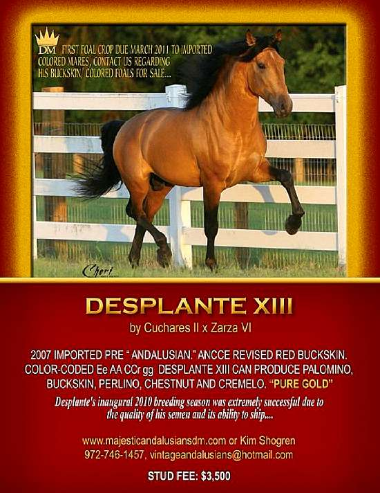 desplante---005_-_desplante__despad.jpg