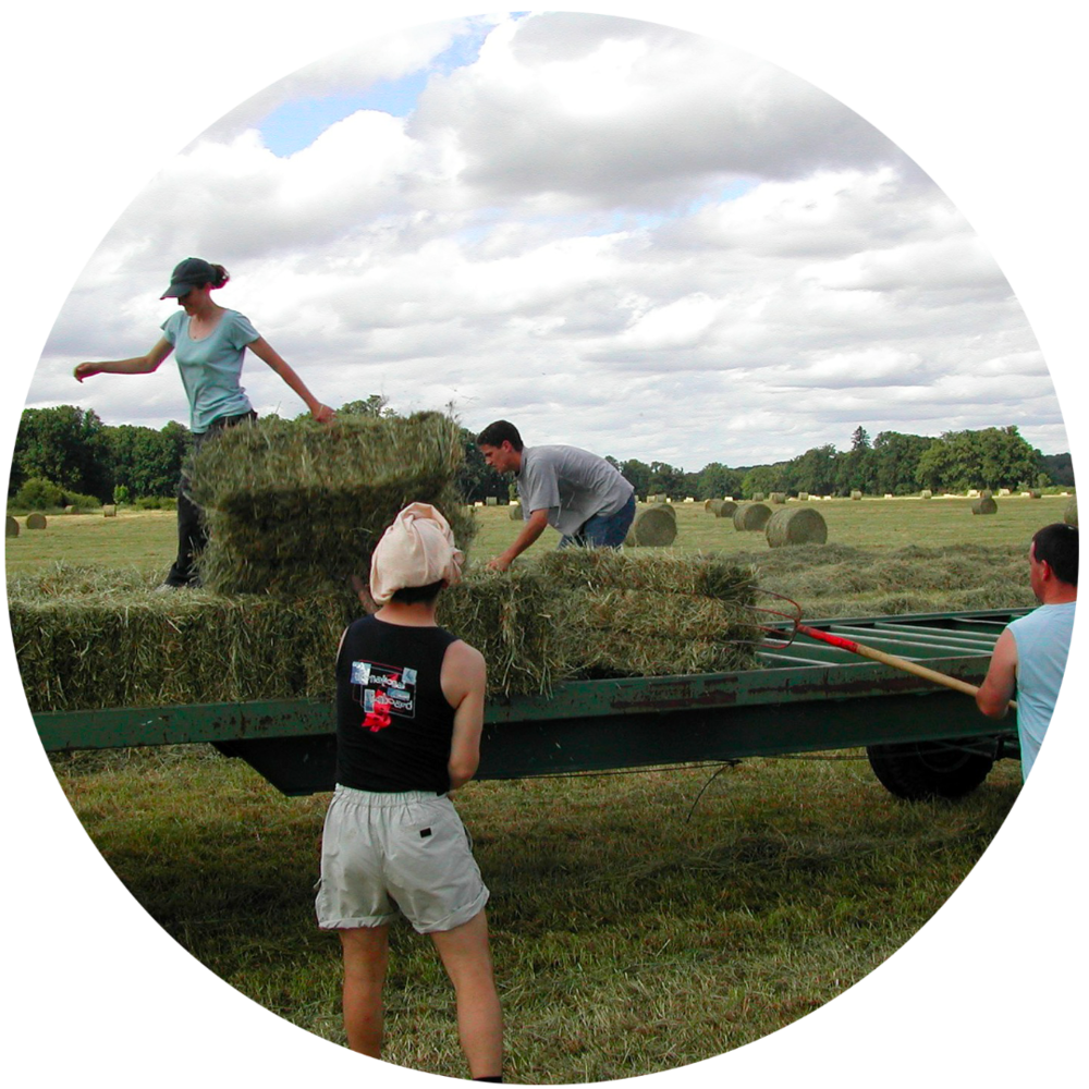 farm-crew-circle.png