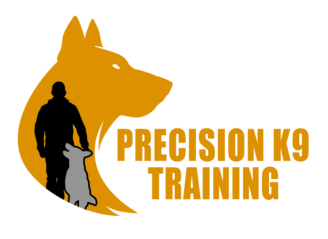 Precision K9 Training