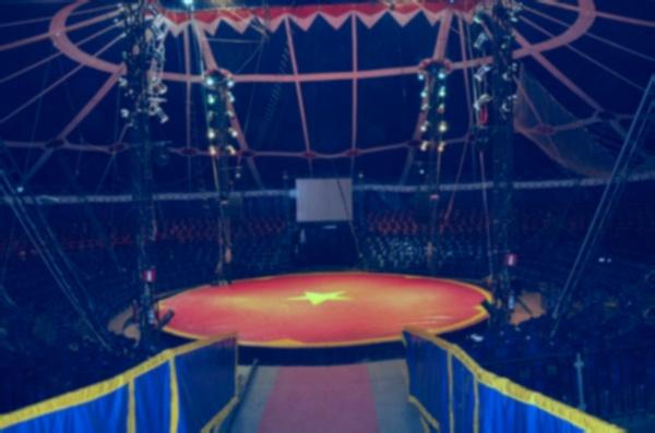 circo-arena-1.jpg