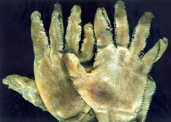 Gein wanted gloves so he could work in his garden.  There's easier ways to get a pair of gloves Mr. Gein.