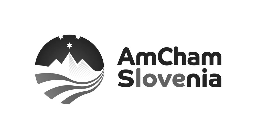 AmCham_Preferred_RGB.png