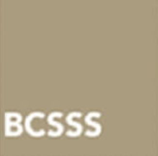 BCSSS – Bertalanffy Center for the Study of Systems Science  (AUT)  Contact person: Mag. Stefan Blachfellner   stefan.blachfellner@bcsss.org