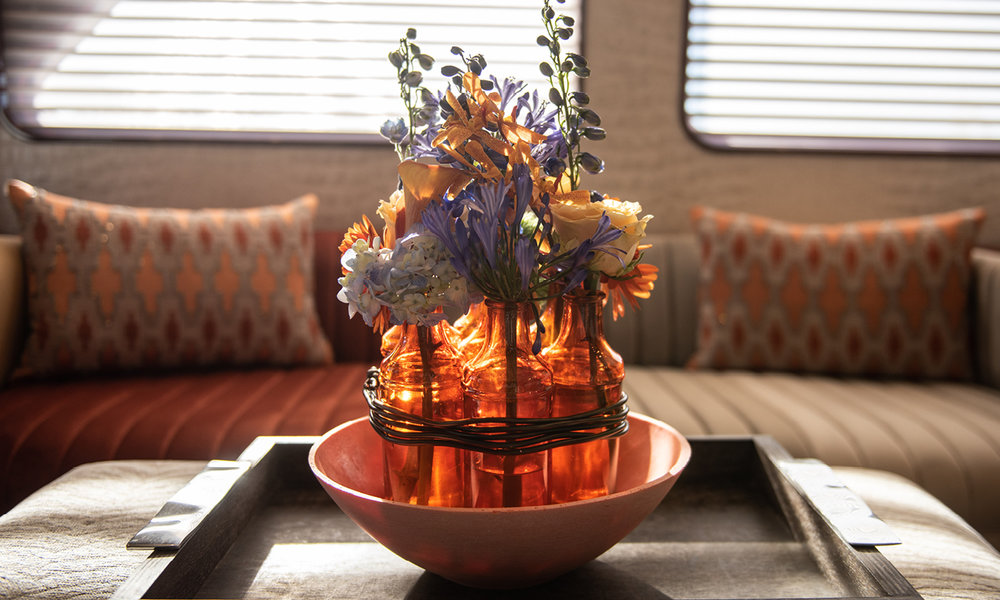 Dianthus-Flowers-Gallery-Yachts-1902-21.jpg