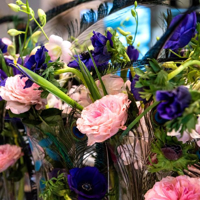 Dianthus-Yacht-Flowers-Details-1.jpg