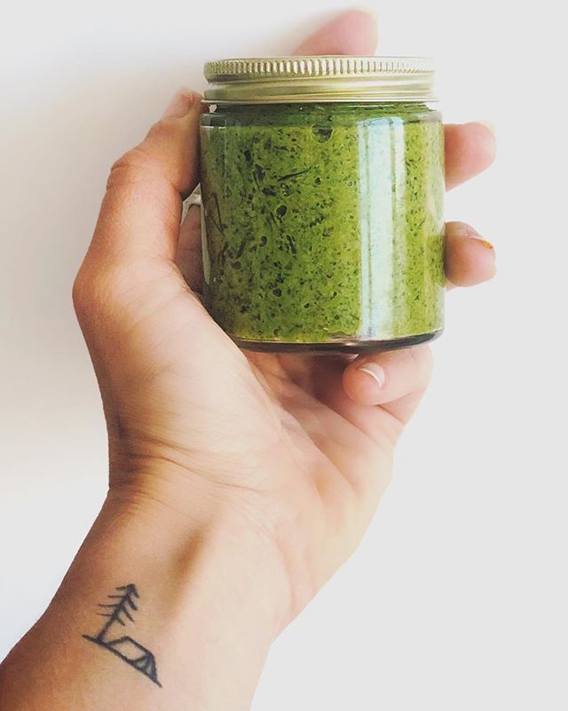 """Wild pesto!🌱 ⠀ Perks of foraging + working on a farm: an overflowing abundance of greens- so much so that I need to preserve some of them! ⠀ This is made from what I foraged in the past few days: a mix of nettle, dandelion greens, and chickweed, with a couple leaves of spinach thrown in. You can make this with just one green, though, it'll be just as good! ⠀ Nettle, dandelion, and chickweed are abundant, especially in disturbed soils, and you're likely to find at least one of them anytime you hike or walk in a park 🌲 They're also incredibly nutritious wild plants, far more so than many of the greens you get from the store 🙃 ⠀ For the pesto: (it's dairy-free, but you can add parm if you want!) ⠀ -1 shitload wild greens (equal to about 3-4 cups) ⠀ -2 cloves garlic ⠀ -1/3 cup walnuts (or pine nuts but they're 💰💰💰) ⠀ -half a squeezed lemon ⠀ -pinch of salt ⠀ -""""enough"""" olive oil, many glugs, until it blends smooth ⠀ Easy peasy, the most nutritious pesto you've ever had!"""