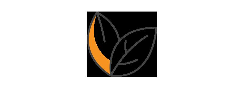 Reggios-Treehouse-Facilitators-Environment-Virginia-Daycare-Preschool-Sycolin-Creek-Brambleton